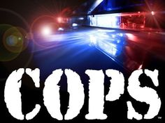 In praise of the TV show Cops.