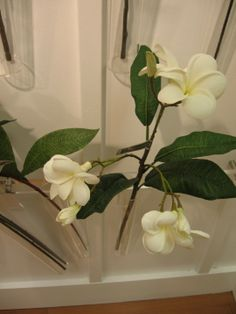 """Fresh Touch"" Plumeria Spray www.couturehomeaz.com"