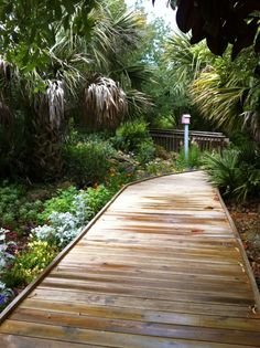 1000 Images About North Carolina Home On Pinterest