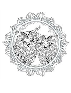 beautiful owl coloring pages for adults
