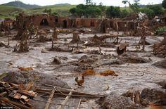 Brésil : le désastre sans précédent sur lequel tout le monde ferme les yeux...