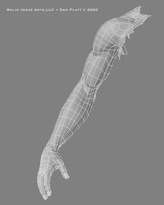 Arm wireframe from the front 3d Anatomy, Anatomy Models, Anatomy For Artists, Anatomy Drawing, Anatomy Study, Zbrush, 3d Model Character, Character Modeling, Blender 3d
