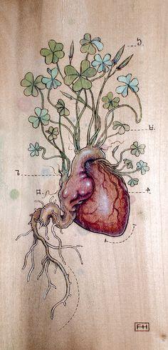 Clover Heart - Fay Helfer