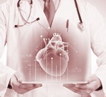 Heart Institute, Spine Surgery, Joint Replacement, Hospitals, Bones, Pdf, Link, Blog, Blogging