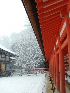 Snow in Shimogamo Shrine, Kyoto, Japan - Shintoist sanctuary which has been protecting Kyoto for centuries