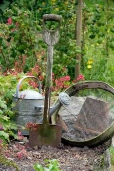 Gardening Tools in a Country Garden