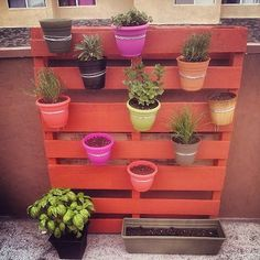 DIY Pallet Projects: In this post, I am going to share plenty of Pallet DIY PROJECTS. All these pallet projects are very easy to make. Select an idea and do it yourself. Vertical Pallet Garden, Vertical Gardens, Garden Pallet, Pallet Gardening, Outdoor Pallet, Herb Gardening, Diy Pallet Projects, Garden Projects, Pallet Ideas