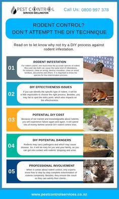 #Rodent #control #Rodentcontrol #Rodentcontrolservice Ant Problem, Pest Control Services, Rodents