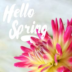 March 20th is the first day of Spring! A time for new beginnings.  Don't you just love SPRING?