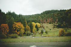 Winston Oregon Wildlife Safari » Joanna Traeger Photography