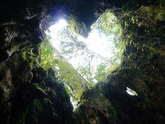 See the heart?  Kinda cool...  Yakushima
