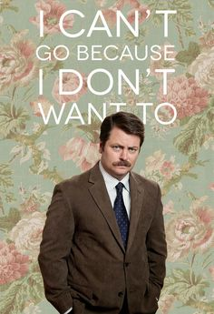 Ron Swanson ~ Parks and Recreation Just started to watch it and I really like him. The hernia episode was very funny. Parks N Rec, Parks And Recreation, Infp, Haha Funny, Hilarious, Mau Humor, My Sun And Stars, Nerd, Mbti