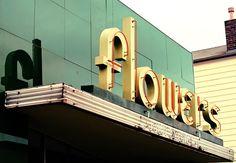 neon flowers, jen zahigian