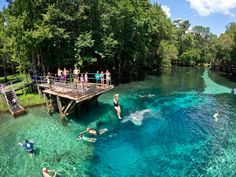 Weeki Wachee Springs tops the list! Enjoy an iconic Florida attraction on #fladventurecoast Article: 'The Kids Will Be Begging to Jump Into These 11 Florida Springs This Summer' https://www.tripstodiscover.com/best-florida-springs-to-take-the-kids-to-this-summer/