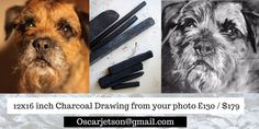 custom charcoal drawings for sale email in photo #dogs #drawing #borderterrier… visit oscarjetson.com to see cool dog art oscarjetson.com