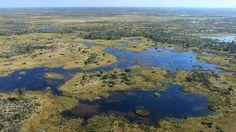 Flussarme und Inseln im Okavango-Delta aus der Luft | Bildquelle: Sven Preger /WDR