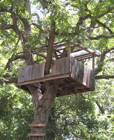 Simple Tree Houses To Build For Kids 50 kids treehouse designs | treehouse, buckets and tree houses