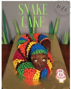 Easy To Make Snake Cake Mama Interrupted - Easy To Make Snake Cake Once My Daughter Stated That She Wanted A Reptile Birthday Party The Wheels In My Brain Were Spinning To Think Of Cute Ideas To Decorate For Our Little Hou Reptiles, Snake Cakes, Snake Party, Reptile Party, 6th Birthday Parties, Birthday Ideas, Easy Boy Birthday Cake, Birthday Cupcakes, Cupcake Cakes