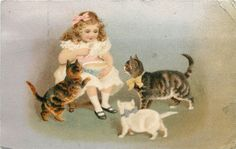 Vintage Postcard Girl Eats Porridge With Hungry Kittens Crowding Around Cats   Collectibles, Postcards, Animals   eBay!