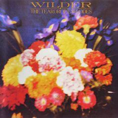 Teardrop Explodes Wilder