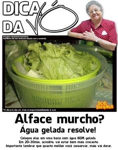 alface murcho? Kitchen Hacks, Homemaking, Vegetable Recipes, Bon Appetit, Clean House, Food Hacks, Health And Beauty, Helpful Hints, Food And Drink