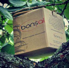 Small box. Bonsai socks.