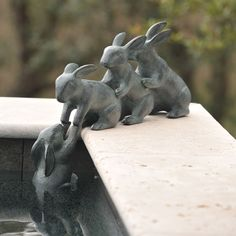 Landscaping Software - Offering Early View of Completed Project Bunny Friends Charleston Gardens - Home And Garden Collection Classic Outdoor And Garden Furnishings, Urns and Planters And Garden-Related Gifts Dream Garden, Home And Garden, Sculpture Art, Garden Sculpture, Charleston Gardens, Garden Urns, Garden Soil, Garden Boxes, Herb Garden