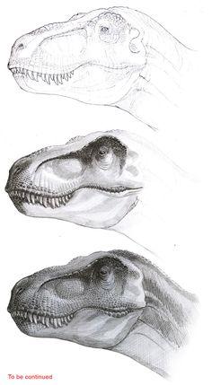 T Rex Jurassic Park, Jurassic World Dinosaurs, Jurassic Park World, Dinosaur Sketch, Dinosaur Drawing, Dinosaur Art, Animal Drawings, Pencil Drawings, Dinosaur Illustration