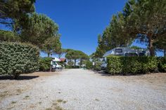 Parco Sosta Lanini di Orbetello (GR) #giropercampeggi #campeggi #camper #tenda