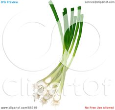 Cooking Tattoo, Clip Art, Tableware, Green, Dinnerware, Tablewares, Dishes, Place Settings