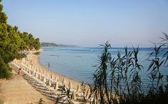 The famous Hotel Kriopigi located in Kassandra peninsula at Halkidiki Greece. Is a holiday resort situated near the traditional village of Kriopigi. Halkidiki Greece, Greece Hotels, Greece Holiday, Holiday Resort, Hotel Spa, 4 Star Hotels, Beach, Places, Water