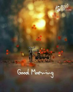 Good Morning People, Good Morning Flowers, Good Morning Messages, Good Morning Greetings, Good Morning Good Night, Good Morning Wishes, Happy Morning, Morning Quotes Images, Morning Memes