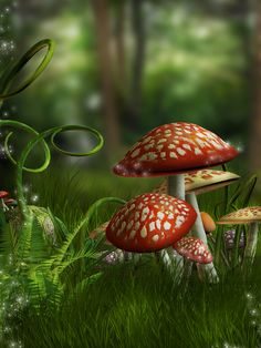 Magical Fantasy Free Graphics - Bing Images