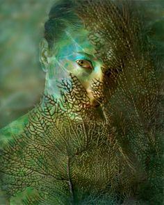 The Mermaid Model: Jacque Diane Photographer: James Edward Creamer Mermaid Cove, Mermaid Art, Mermaids And Mermen, Water Element, Merfolk, The Victim, Mother Nature, Mother Earth, Fine Art Photography