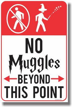 AmazonSmile: No Muggles Beyond This Point - NEW Humor Magic Wizard Poster: Office Products