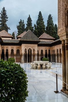 Patio of the Lions, colonaides with a fountain atop lions, with birds singing and flying in circles around the plaza. Birds play here, within the Moorish palace the Alhambra in Granada, Spain. Islamic Architecture, Beautiful Architecture, Alhambra Spain, Andalusia Spain, Places To Travel, Places To Go, Le Riad, Spain And Portugal, Spain Travel