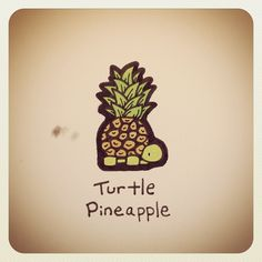 Turtle Pineapple #turtleadayjuly - @Stephie Safford James Couture Portraits…