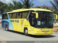 FOTOS  ONIBUSALAGOAS: PRIME PLUS  224