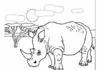 dieren kleurplaat: Neushoorn in Afrika