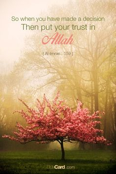 """""""So when you have made a decision then put your trust in Allah."""" Qur'an - Sourat Aali 'imran, verse 159"""