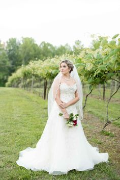 Knoxville, Tennessee bridal portraits at the winery by wedding photographers Shane and Beth Hawkins. Click to see more photos.