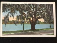 Early 1900s Lake Lucerne, Orlando, FL postcard