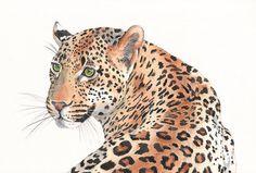 Luipaard aquarel schilderij dierlijke kunst-print van