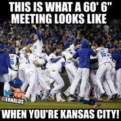Take the Synderella!  World Series Kansas City Royals 2015
