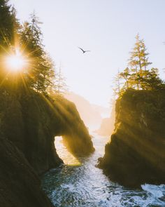 Don't miss out on a single adventure with this Oregon road trip! Click the links to see all the best spots in Oregon such as: the Oregon Coast, Oregon hikes, Oregon photography spots and more. | Things To Do In Oregon, Oregon Bucket List, Oregon travel, Oregon Travel beautiful places #hiking #outdoors #pnw #pacificnorthwest #oregon #roadtrip #adventure #photography