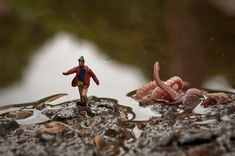 Quote: These photographs by Kurt Moses transport us into the adventures of a small, small world. Un Petit Monde is an intriguing and amusing collection of tiny people arranged in macro lens settings. Moses teams up with his wife Edwige to create the intricate scenes involving characters in everyday life situations—walking the dog or playing in the snow—as well as not-so-everyday scenes—facing the challenge of transporting a gigantic pumpkin or escaping the attack of a giant squid!