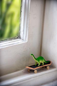 Forgotten dinosaur on a skateboard.