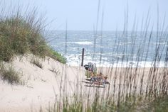The Outerbanks - family reunion in late May! Can't wait!!