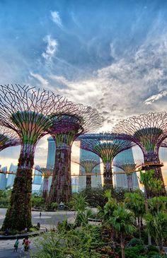 Gardens by the Bay, Singapore: an extraordinary project to create a symbiosis between the city and nature. To act sustainable light and cooling workds due to photovoltaics. // Gardens by the Bay, Singapore: Ein ausßergewöhnliches Projekt, welches Stadt und Natur zusammeführt. Auch bei Beleuchtung und Kühlung wird nachhaltig gehandelt und deshalb auf Photovoltaik gesetzt. #FutureLiving #GardensByTheBay #Singapore #LifeLessOrdinary