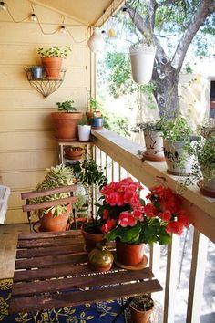 Vocês adoram um verde como eu ? Mas moram em apartamento e não tem jardim ? Qualquer cantinho serve, até uma mini sacada, como vão ver nessas fotos. Inspirem-se nas ideias !